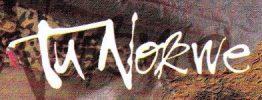 Tu Nokwe Logo